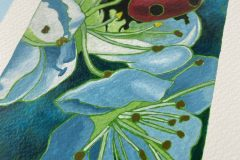 Gina Ketelaars Studio Ginart Acrylverf Lieveheersbeestje